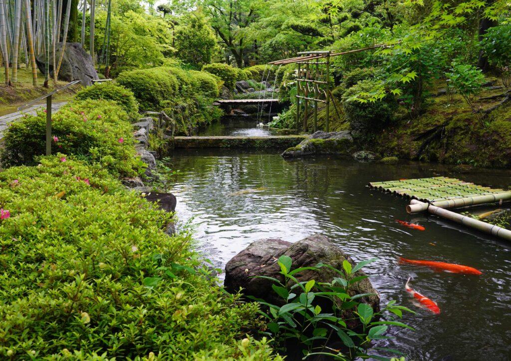 新緑の庭園ホーム